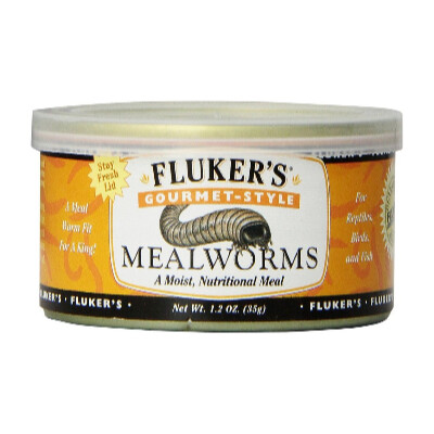 buy Flukers-Gourmet-Canned-Food-Mealworms